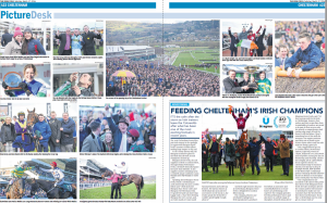 Cheltenham 2018 - Bluegrass Horse Feeds feeding Gordon Elliot's champions since 2005